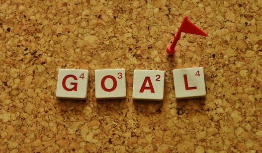 el-fin-conseguir-el-objetivo