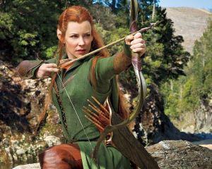 wunderlist-elfos